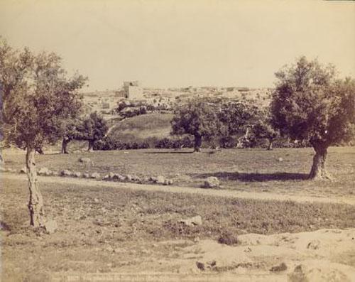Beit-jibrin-