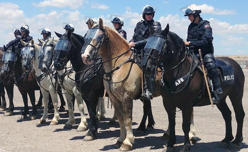 Albuquerque_police_department-