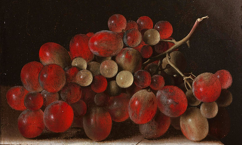 Grapes_verso_blog-
