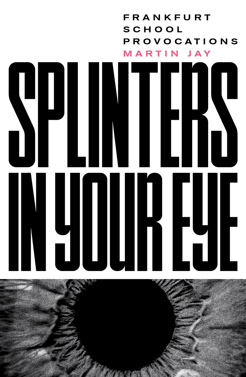 Splinters in Your Eye: Frankfurt School Provocations Couverture du livre